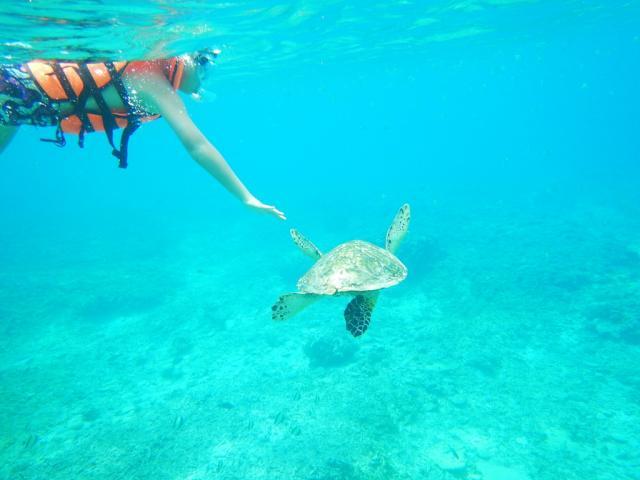 梦境之旅-----巴厘岛自由行(五) 浮潜和赶海
