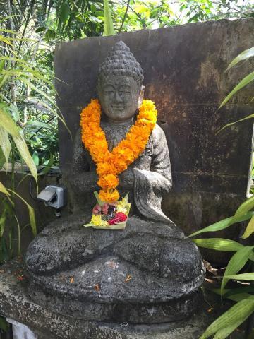 巴厘岛自由行(二)圣泉寺、金塔马尼火山、乌布皇宫和脏鸭饭